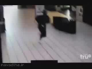 کلیپ برخورد یک دزد با شیشه